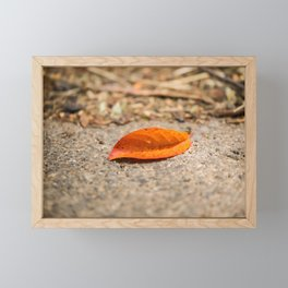 Orange leaf lying on the street Framed Mini Art Print