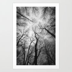 Vertigo 2 Art Print