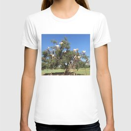 Goats in a tree T-shirt