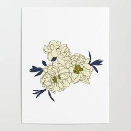 Botanical floral illustration line drawing - Peony Poster