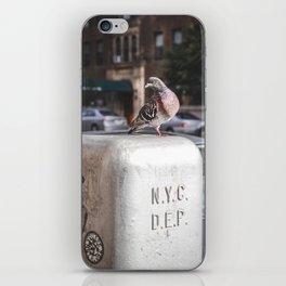 NYC Pigeon iPhone Skin