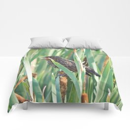 Cattails and the Bird Comforters