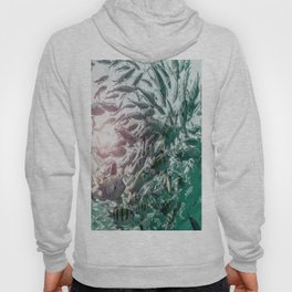 Fish photography Hoody