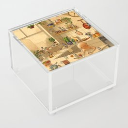 Kitchen Counter Acrylic Box