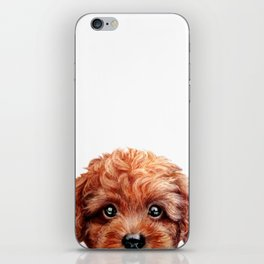 Toy poodle red brown Dog illustration original painting print iPhone Skin