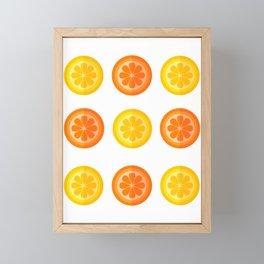 Citrus Fresh Framed Mini Art Print