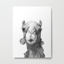 Black and White Camel Portrait Metal Print