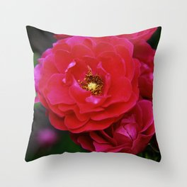 Red Shrub Roses Throw Pillow