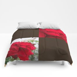 Red Rose Edges Blank Q3F0 Comforters