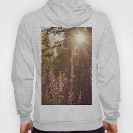 A New Day Wildflowers at Dawn - Nature Photography Hoody