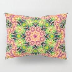 BBQSHOES: Kaleioscopic Fractal Mandala 1543K2 Pillow Sham