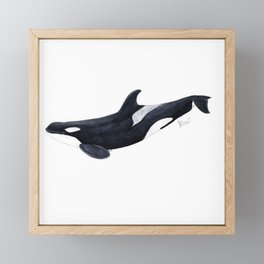 Orca killer whale Framed Mini Art Print