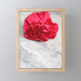 One Pink Carnation Framed Mini Art Print