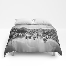 Dead Lakes Florida Black and White Comforters