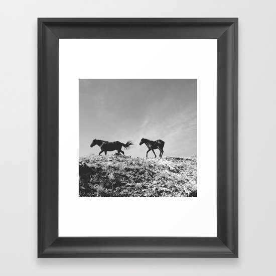 Pryor Mountain Wild Mustangs Framed Art Print