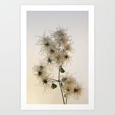Florales · plant end 7 Art Print