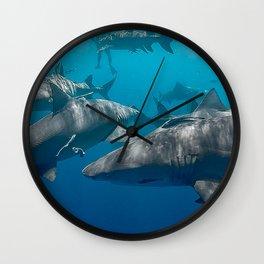 Lemon Shark School Wall Clock