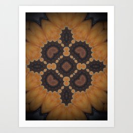 Desert Rose Art Print