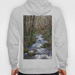 Oregon Mountain Stream and Alder Trees Hoody