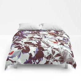 Eden tree Comforters
