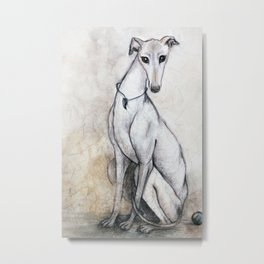 The Greyhound Wearing His Thorn Metal Print