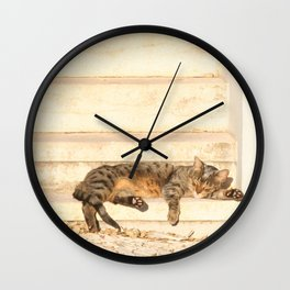 The sun shines on all cats equally Wall Clock