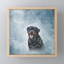 rottweiler dog Framed Mini Art Print