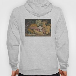 Vintage Illustration of Tropical Fruits (1871) Hoody