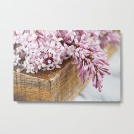 Close-up of lilac flowers in a wooden box. Metal Print