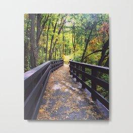 Metro Park 1015 Metal Print