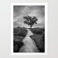 Windswept Tree at Fort Fisher NC -- Black and White Coastal Landscape Art Print