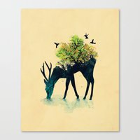 a lot of cats Canvas Prints featuring Watering (A Life Into Itself) by Picomodi