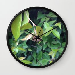 Look Into My Magical Orb I Wall Clock