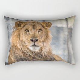 Lambert the Lion All Grown Up Rectangular Pillow