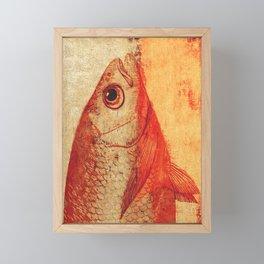 Piscibus 11 Framed Mini Art Print