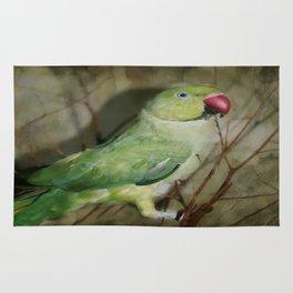 Indian Ringneck Parrot - Cherokee Rug