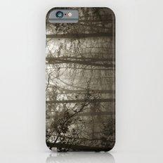 Foggy Woods iPhone 6s Slim Case
