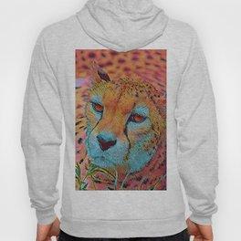 Popular Animals - Cheetah Hoody