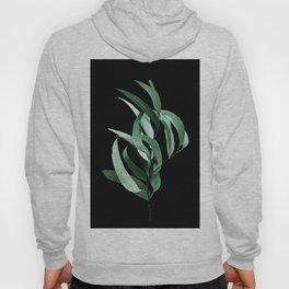Eucalyptus III - night Hoody