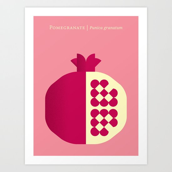 Fruit: Pomegranate Art Print