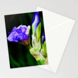 Purple Iris and Buds Stationery Cards
