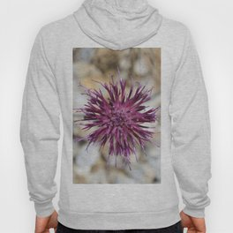 Purple Spiny Plumeless Thistle Hoody