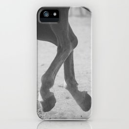 In Flight iPhone Case