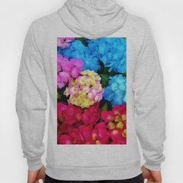 Red Blue Rose Flower Blossoms Hydrangeas Hoody