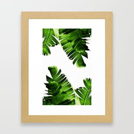 Green banana leaf Framed Art Print