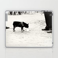 Dog on the street Laptop & iPad Skin