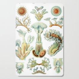 Ernst Haeckel - Scientific Illustration - Bryozoa Cutting Board