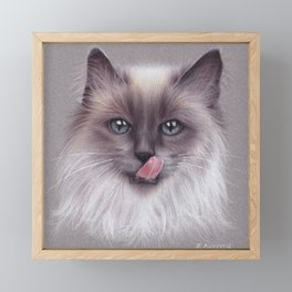 Cat colored pencils drawing Framed Mini Art Print