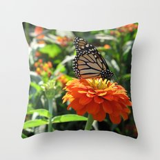 Papillon Means Butterfly Throw Pillow