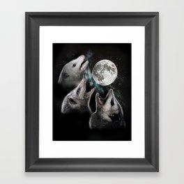 3 opossum moon Framed Art Print